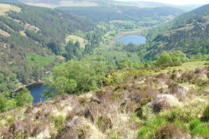 Glendalough Co. Wicklow